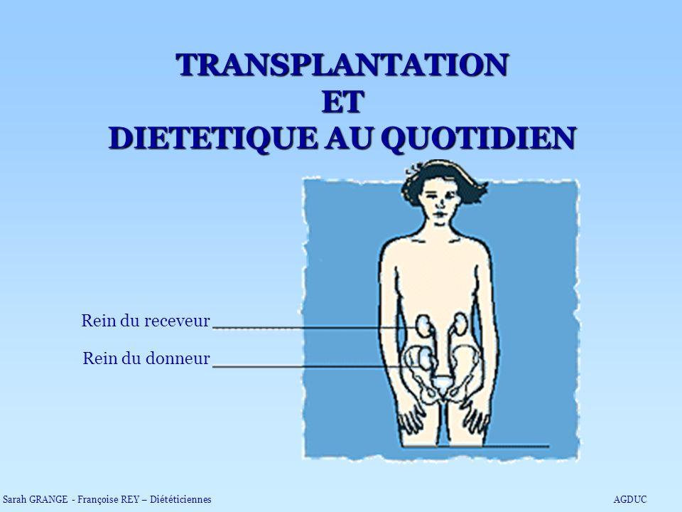 TRANSPLANTATION ET DIETETIQUE AU QUOTIDIEN Rein du receveur Rein du donneur Sarah GRANGE - Françoise REY – DiététiciennesAGDUC