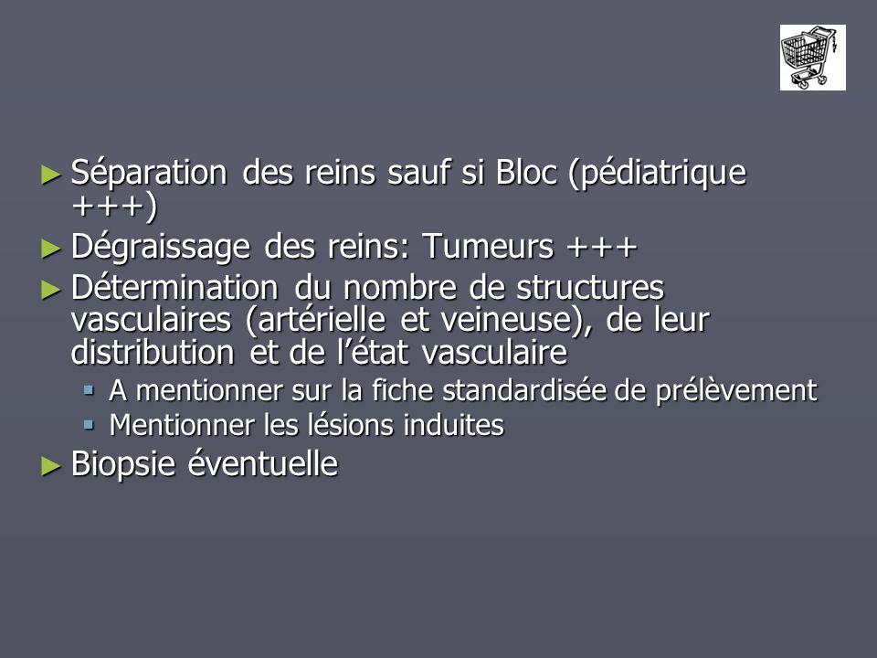 Séparation des reins sauf si Bloc (pédiatrique +++) Séparation des reins sauf si Bloc (pédiatrique +++) Dégraissage des reins: Tumeurs +++ Dégraissage