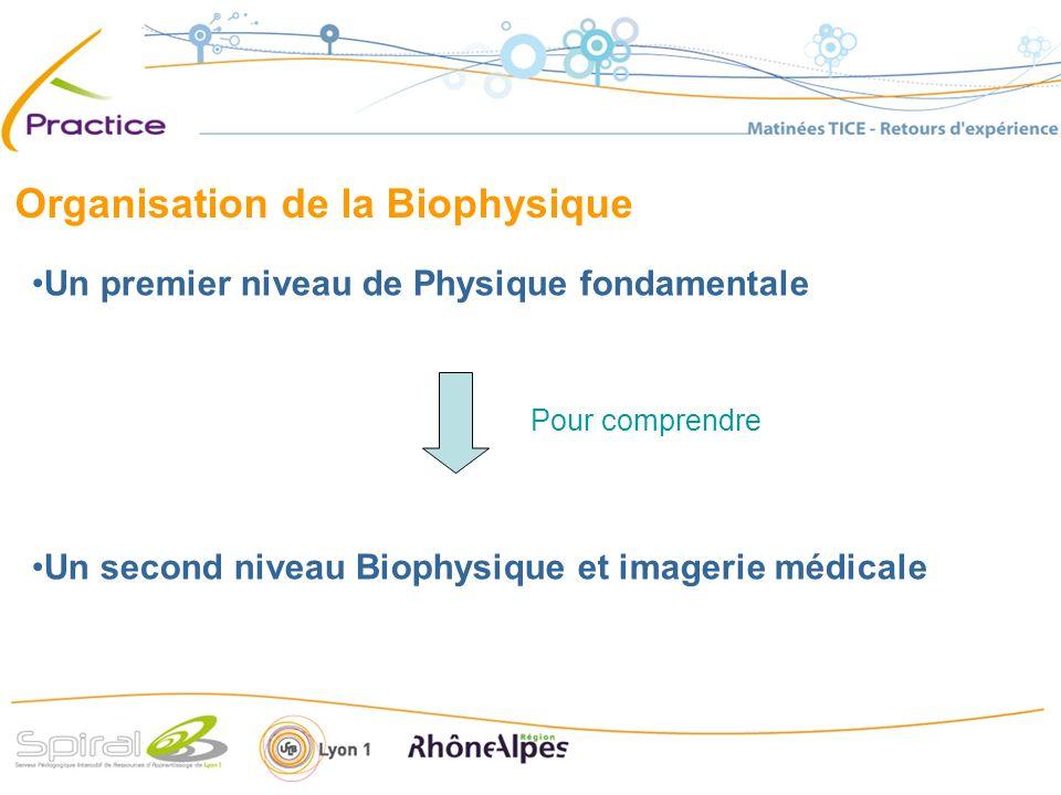 Organisation de la Biophysique Un premier niveau de Physique fondamentale Un second niveau Biophysique et imagerie médicale Pour comprendre