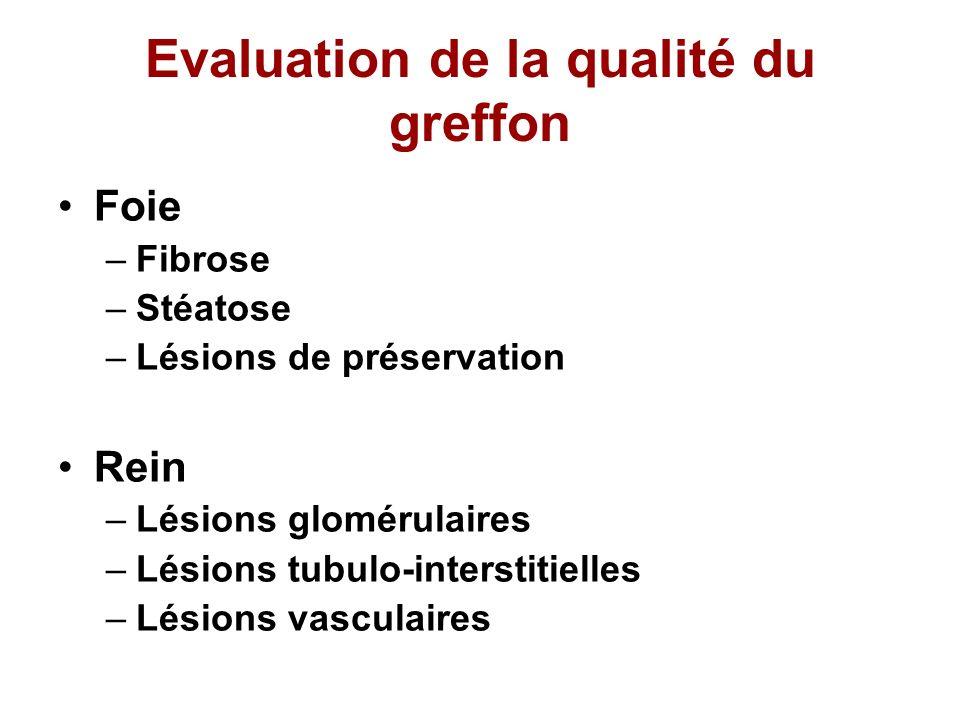 Evaluation de la qualité du greffon Foie –Fibrose –Stéatose –Lésions de préservation Rein –Lésions glomérulaires –Lésions tubulo-interstitielles –Lési