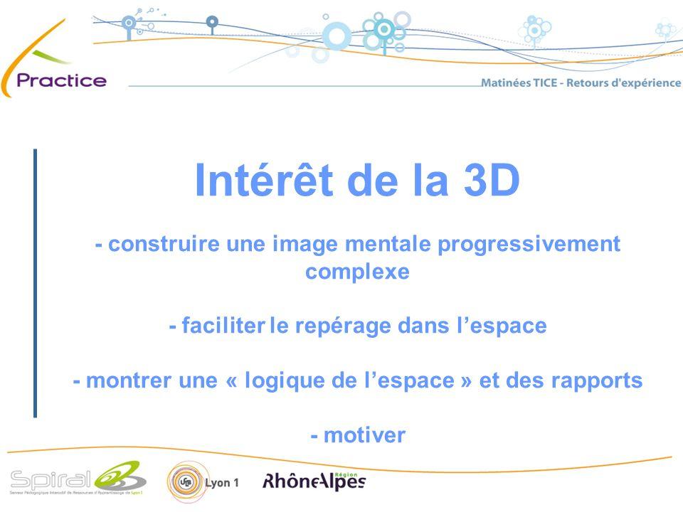 Intérêt de la 3D - construire une image mentale progressivement complexe - faciliter le repérage dans lespace - montrer une « logique de lespace » et des rapports - motiver