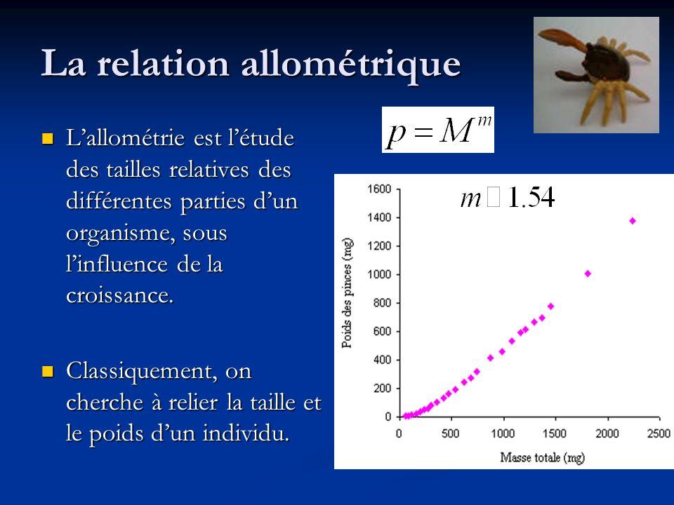 La relation allométrique Lallométrie est létude des tailles relatives des différentes parties dun organisme, sous linfluence de la croissance. Lallomé