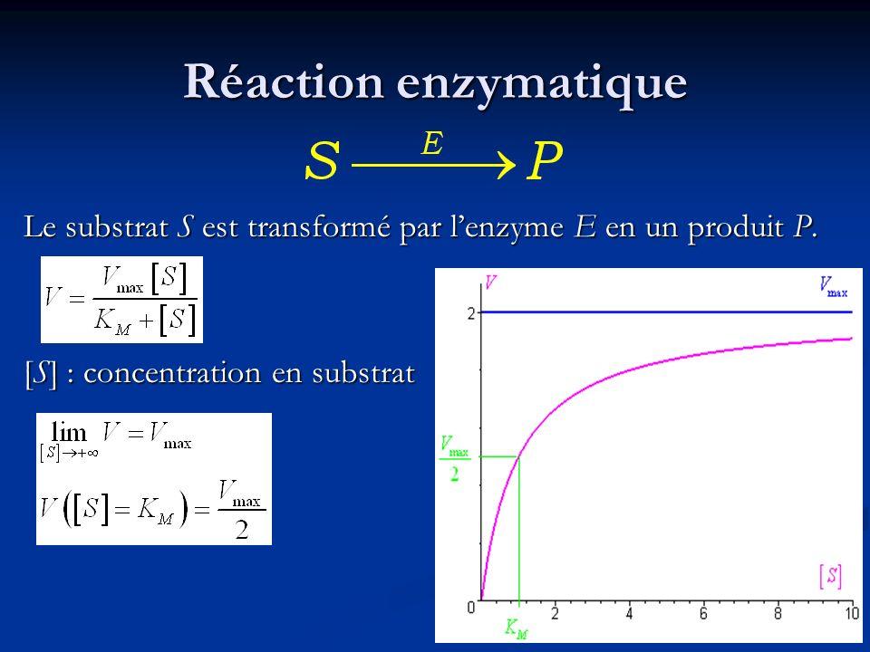 Réaction enzymatique Le substrat S est transformé par lenzyme E en un produit P. [S] : concentration en substrat