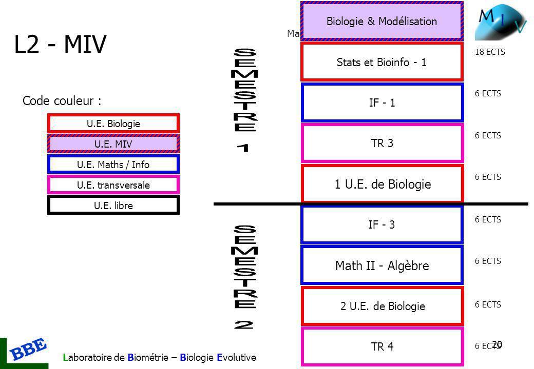 Mathématiques et Informatique du Vivant Laboratoire de Biométrie – Biologie Evolutive 20 L2 - MIV 2 U.E. de Biologie Stats et Bioinfo - 1 Biologie & M