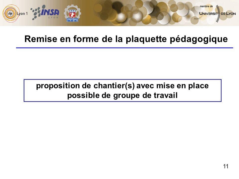 11 Remise en forme de la plaquette pédagogique proposition de chantier(s) avec mise en place possible de groupe de travail
