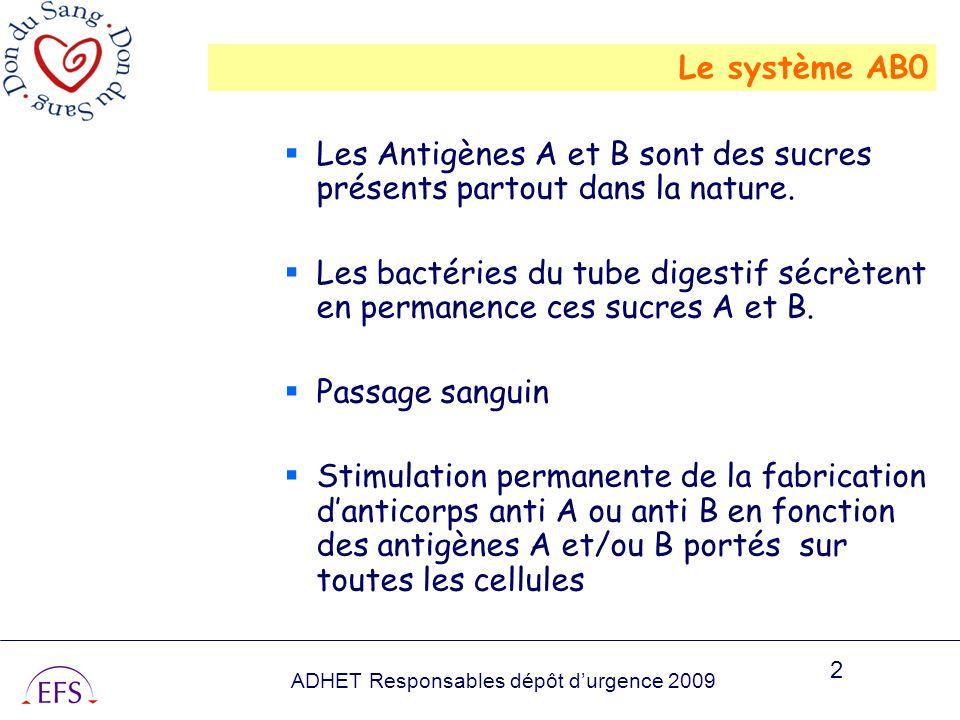 ADHET Responsables dépôt durgence 2009 2 Le système AB0 Les Antigènes A et B sont des sucres présents partout dans la nature. Les bactéries du tube di