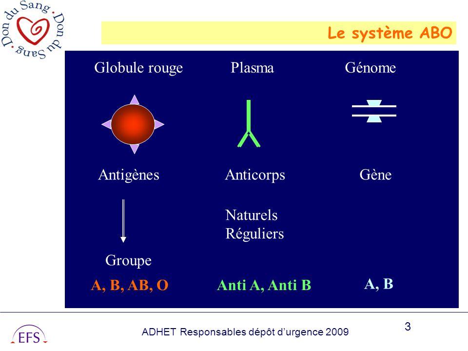 ADHET Responsables dépôt durgence 2009 3 Le système ABO Globule rouge Antigènes Groupe Plasma Anticorps Génome Gène Naturels Réguliers A, B, AB, OAnti