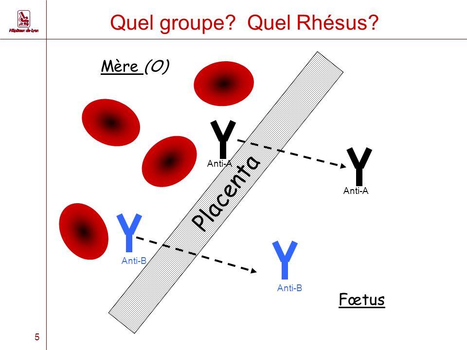 5 Quel groupe? Quel Rhésus? Placenta Mère (O) Fœtus Anti-A Anti-B Anti-A Anti-B