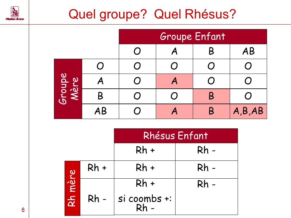 6 Quel groupe.Quel Rhésus.