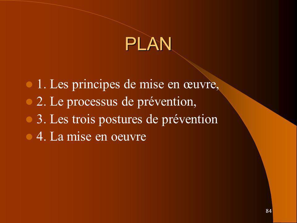 84 PLAN 1. Les principes de mise en œuvre, 2. Le processus de prévention, 3. Les trois postures de prévention 4. La mise en oeuvre