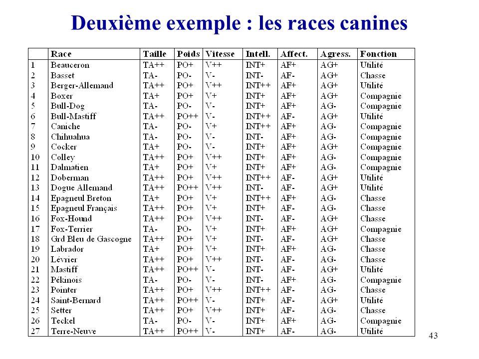 43 Deuxième exemple : les races canines