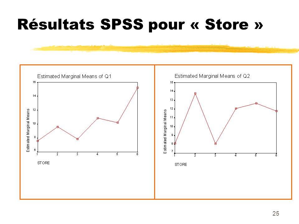 25 Résultats SPSS pour « Store »