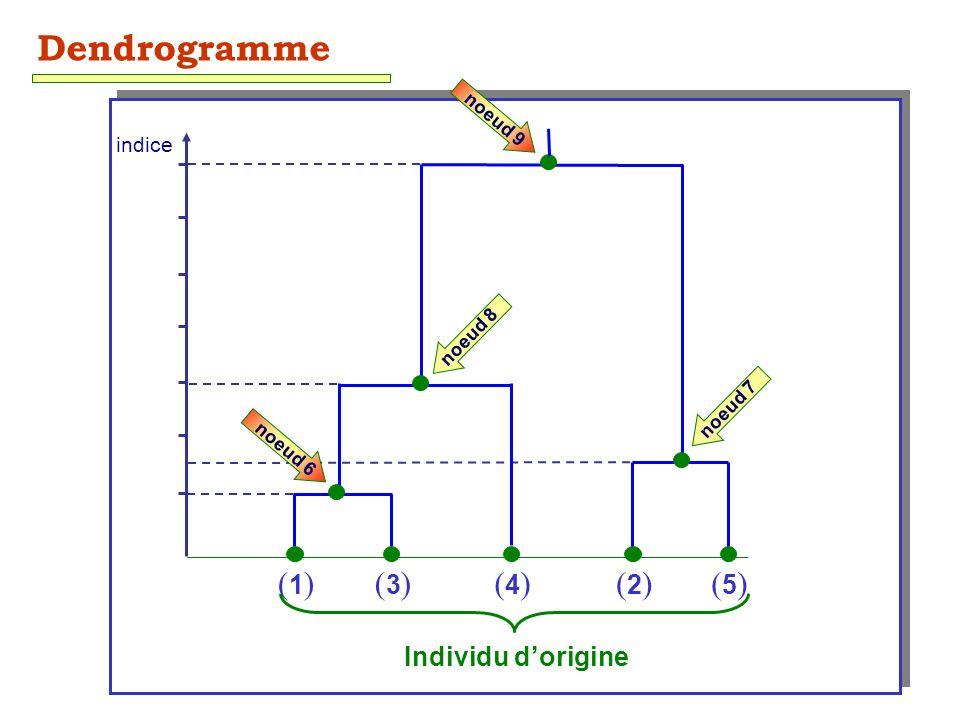 53 (1)(1)(3)(3)(4)(4)(2)(2)(5)(5) Individu dorigine indice Dendrogramme noeud 6 noeud 7 noeud 9 noeud 8