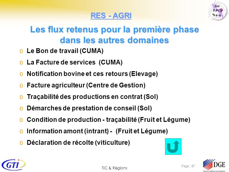 TIC & Régions Page : 87 Les flux retenus pour la première phase dans les autres domaines o Le Bon de travail (CUMA) o La Facture de services (CUMA) o