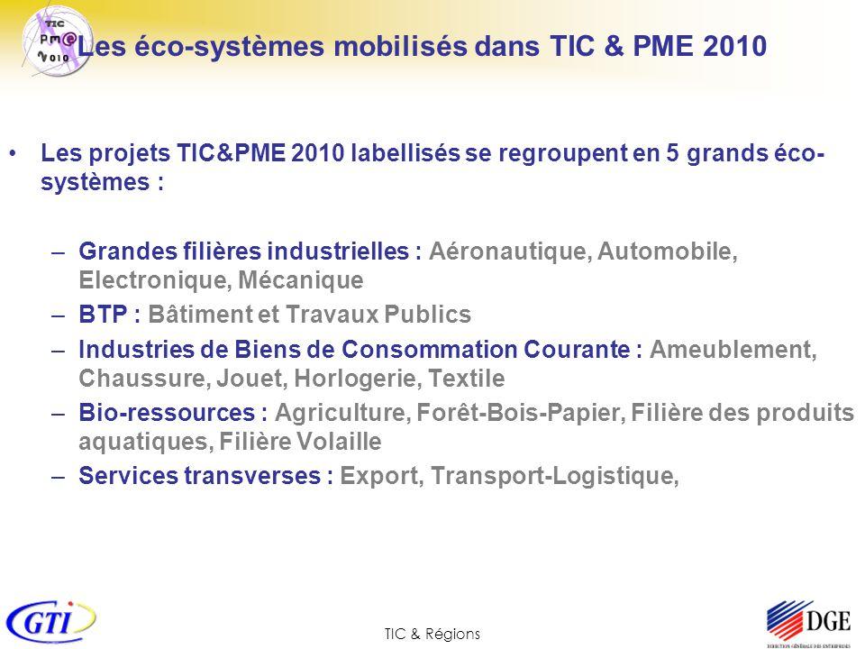 TIC & Régions Les éco-systèmes mobilisés dans TIC & PME 2010 Les projets TIC&PME 2010 labellisés se regroupent en 5 grands éco- systèmes : –Grandes fi