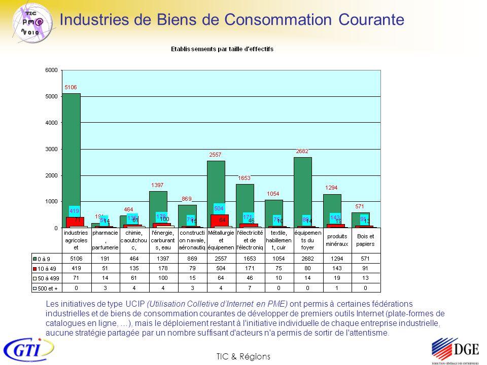 TIC & Régions Industries de Biens de Consommation Courante Les initiatives de type UCIP (Utilisation Colletive dInternet en PME) ont permis à certaine