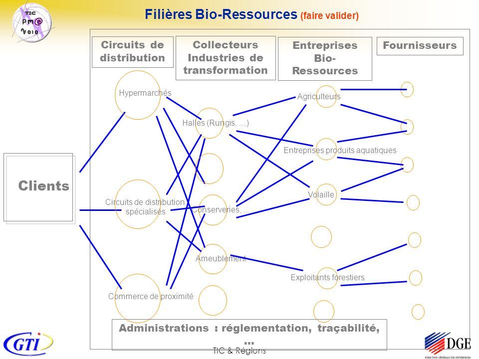 TIC & Régions Circuits de distribution FournisseursEntreprises Bio- Ressources Filières Bio-Ressources (faire valider) Clients Hypermarchés Circuits d