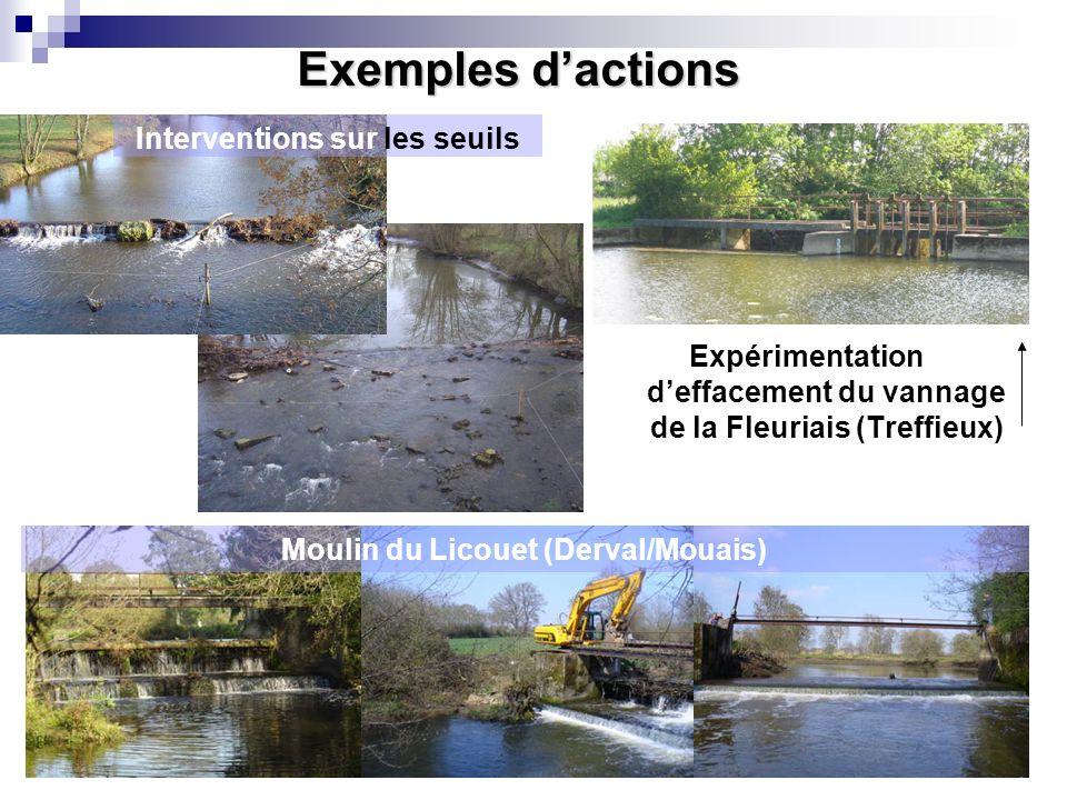 Conférence sur l'eau Exemples dactions Moulin du Licouet (Derval/Mouais) Expérimentation deffacement du vannage de la Fleuriais (Treffieux) Interventi
