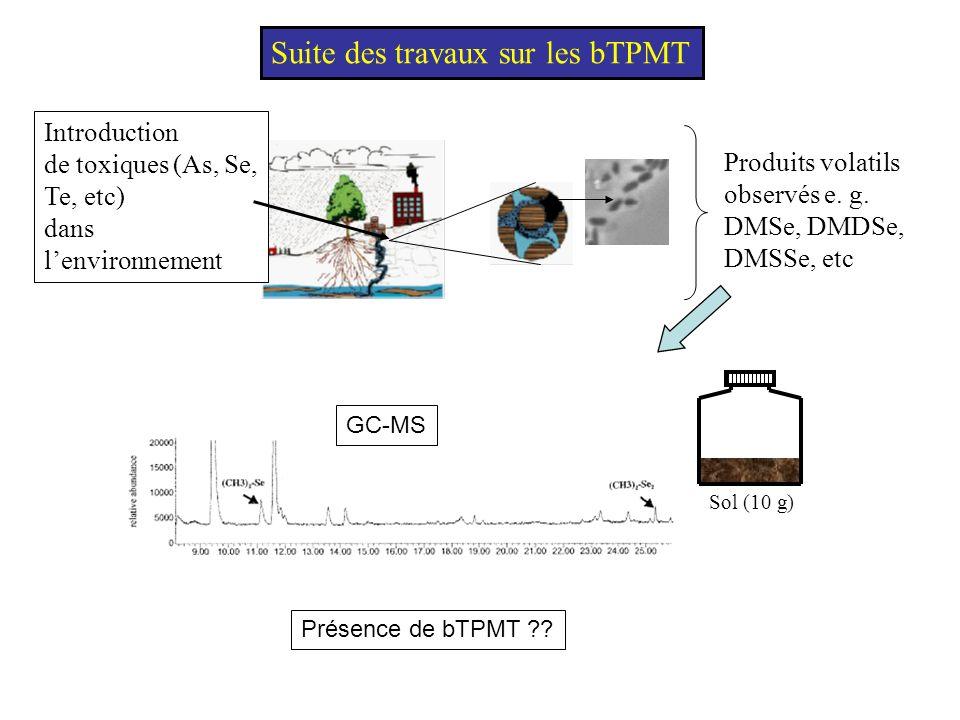 Détection des gènes de la bTPMT 1 216 AA 43127 78 AA 234 bp détection de tpm dans les ADN méta-génomiques des sols et des eaux Stratégie mise en place - élaboration dun crible PCR / utilisation des domaines conservés TPMT-E vs huTPMT (30% identités; 55% similarités) TPMT-E