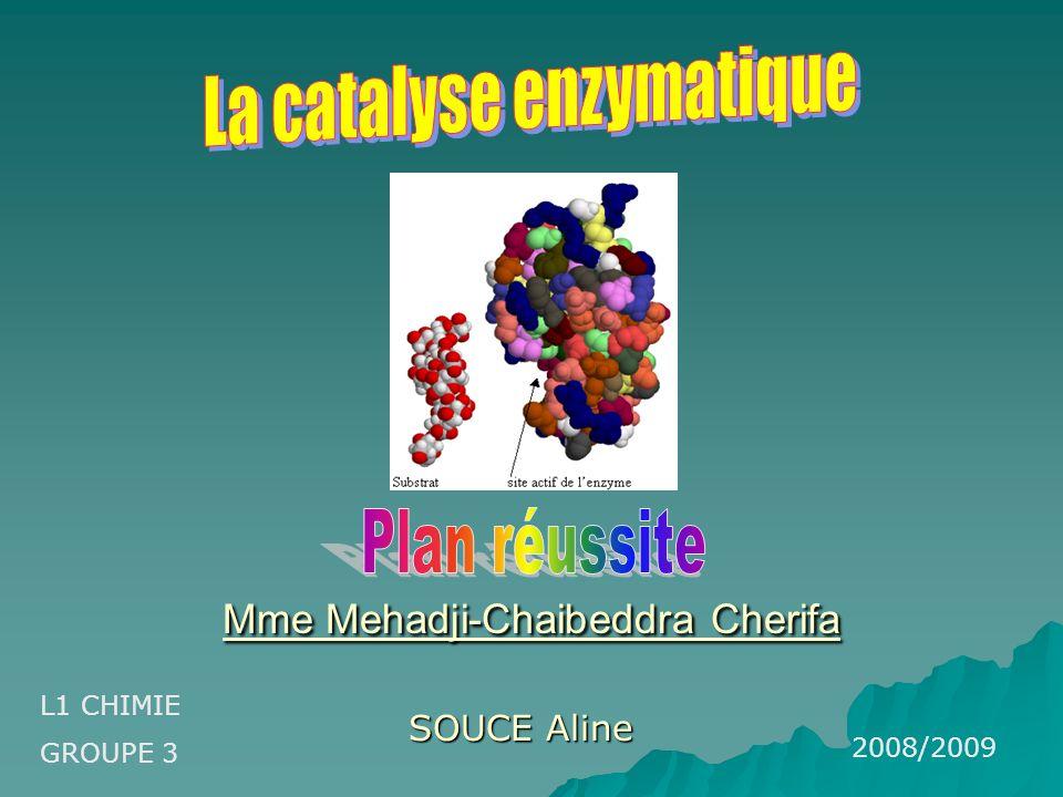 Mme Mehadji-Chaibeddra Cherifa Mme Mehadji-Chaibeddra Cherifa SOUCE Aline L1 CHIMIE GROUPE 3 2008/2009