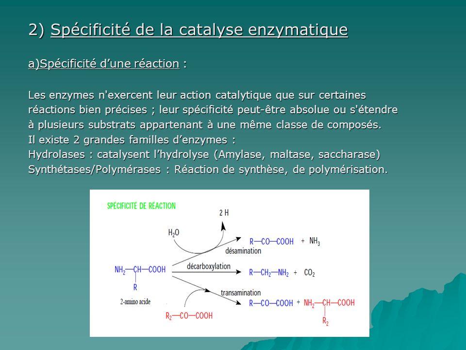 2) Spécificité de la catalyse enzymatique a)Spécificité dune réaction : Les enzymes n exercent leur action catalytique que sur certaines réactions bien précises ; leur spécificité peut-être absolue ou s étendre à plusieurs substrats appartenant à une même classe de composés.