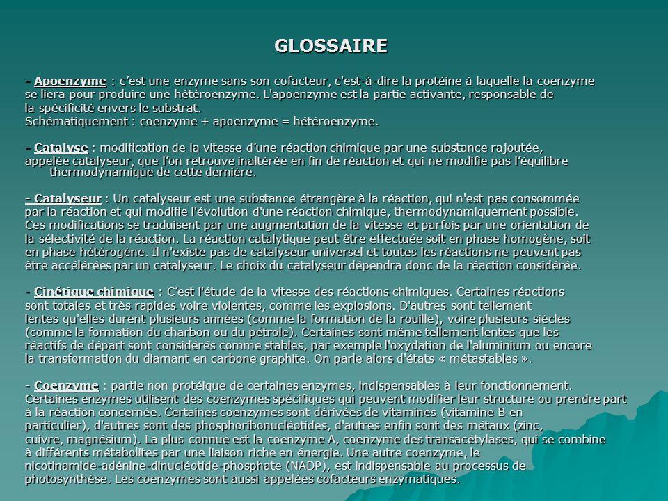 GLOSSAIRE - Apoenzyme : cest une enzyme sans son cofacteur, c'est-à-dire la protéine à laquelle la coenzyme se liera pour produire une hétéroenzyme. L