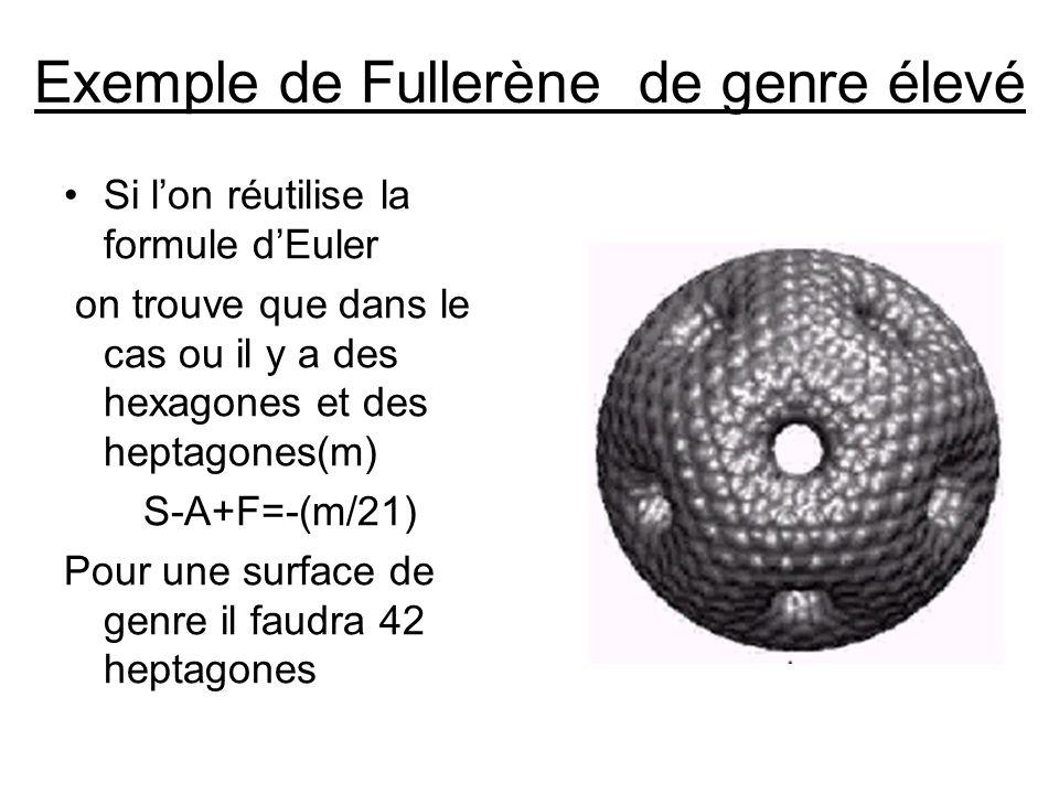 Exemple de Fullerène de genre élevé Si lon réutilise la formule dEuler on trouve que dans le cas ou il y a des hexagones et des heptagones(m) S-A+F=-(m/21) Pour une surface de genre il faudra 42 heptagones