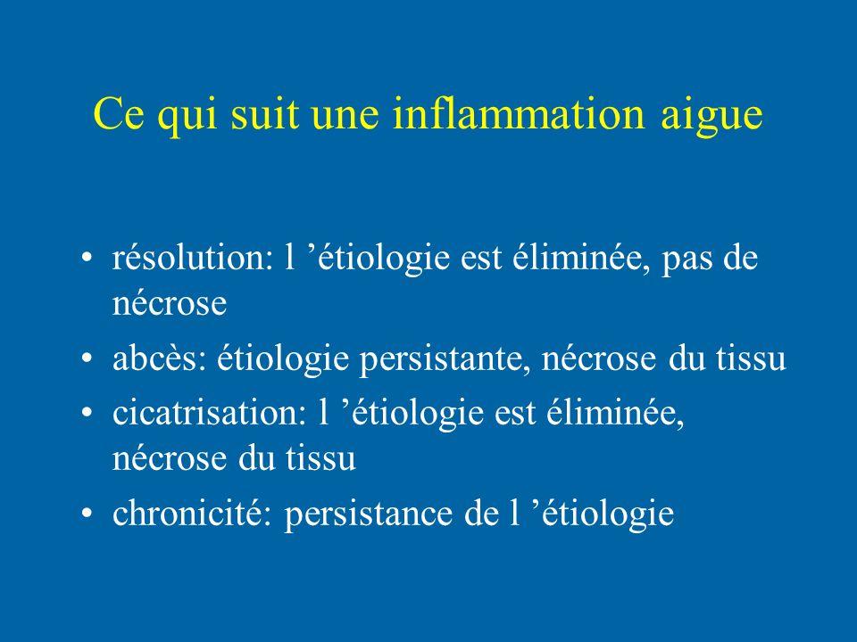 Ce qui suit une inflammation aigue résolution: l étiologie est éliminée, pas de nécrose abcès: étiologie persistante, nécrose du tissu cicatrisation: