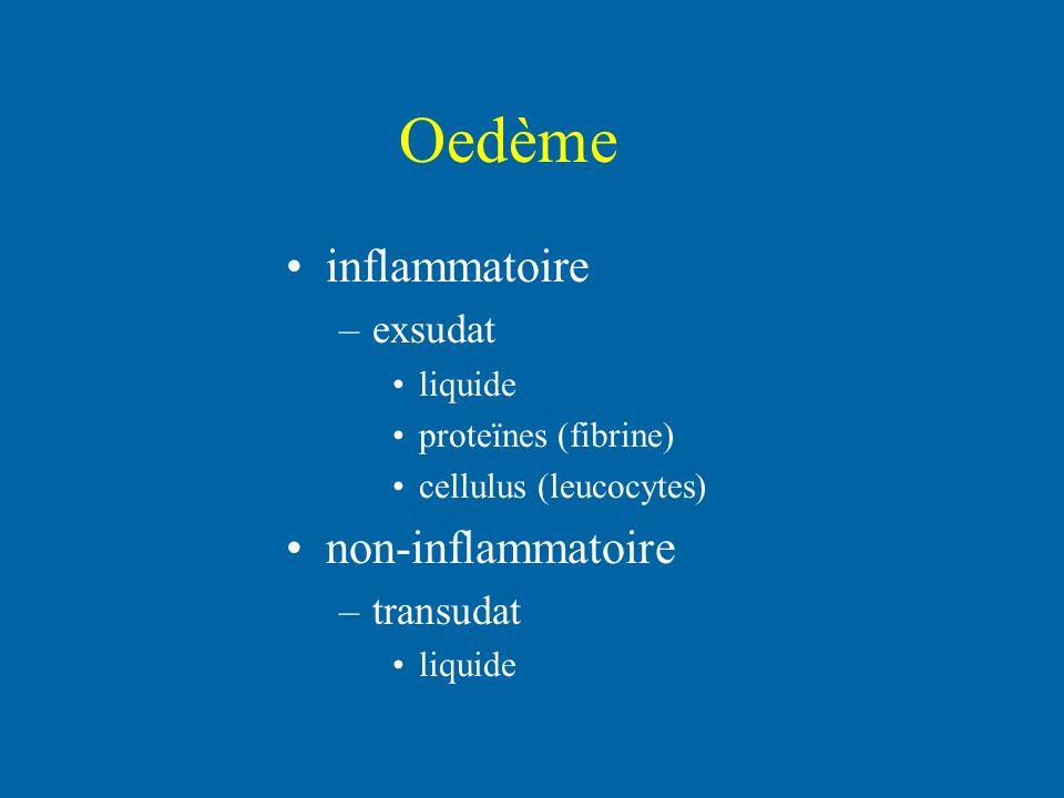 Oedème inflammatoire –exsudat liquide proteïnes (fibrine) cellulus (leucocytes) non-inflammatoire –transudat liquide
