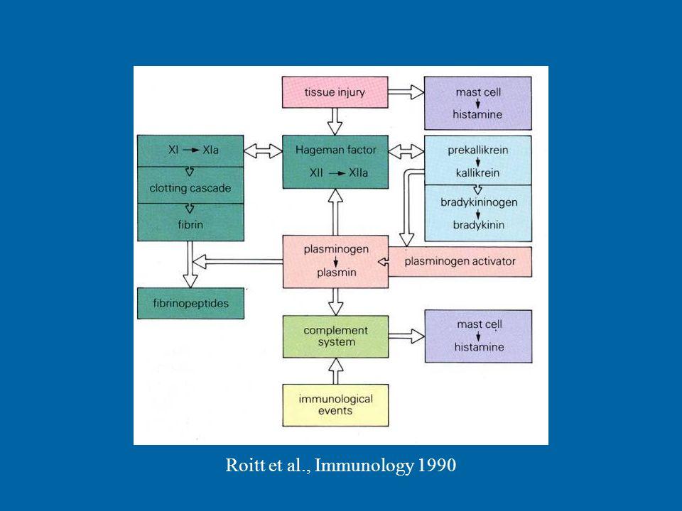 Roitt et al., Immunology 1990