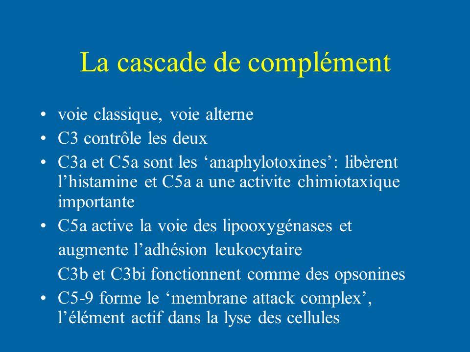 La cascade de complément voie classique, voie alterne C3 contrôle les deux C3a et C5a sont les anaphylotoxines: libèrent lhistamine et C5a a une activ