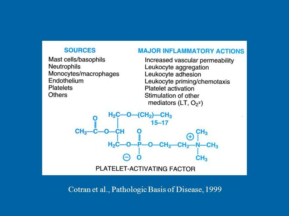 Cotran et al., Pathologic Basis of Disease, 1999