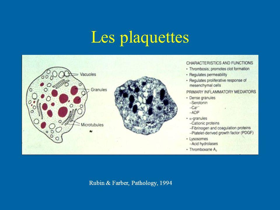 Les plaquettes Rubin & Farber, Pathology, 1994