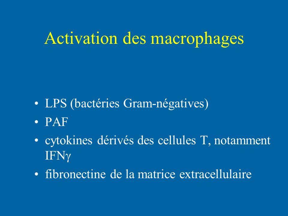 Activation des macrophages LPS (bactéries Gram-négatives) PAF cytokines dérivés des cellules T, notamment IFN fibronectine de la matrice extracellulai