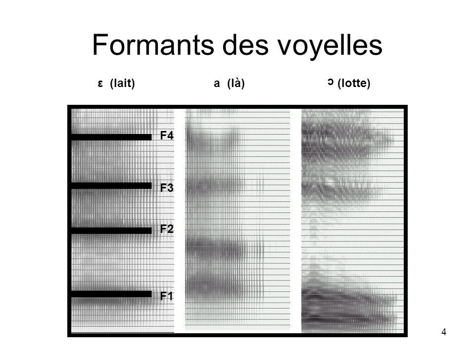 4 Formants des voyelles ε (lait) a (là) (lotte) c F1 F2 F3 F4
