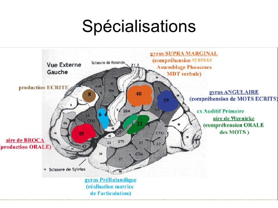 7 Spécialisations syntaxe