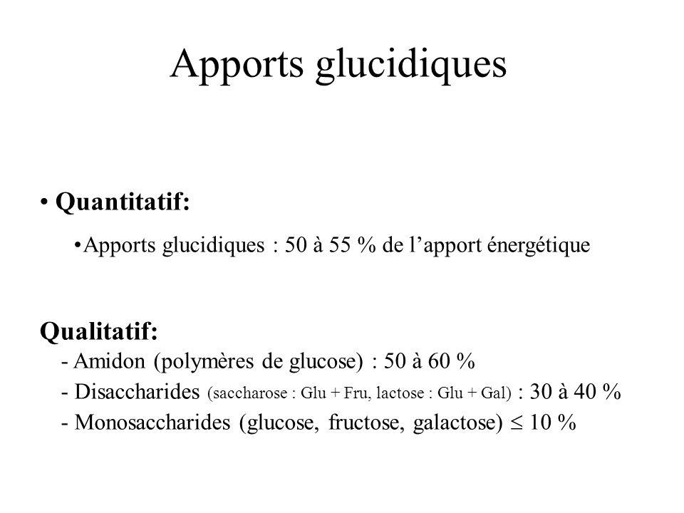 Apports glucidiques Quantitatif: Apports glucidiques : 50 à 55 % de lapport énergétique Qualitatif: - Amidon (polymères de glucose) : 50 à 60 % - Disa