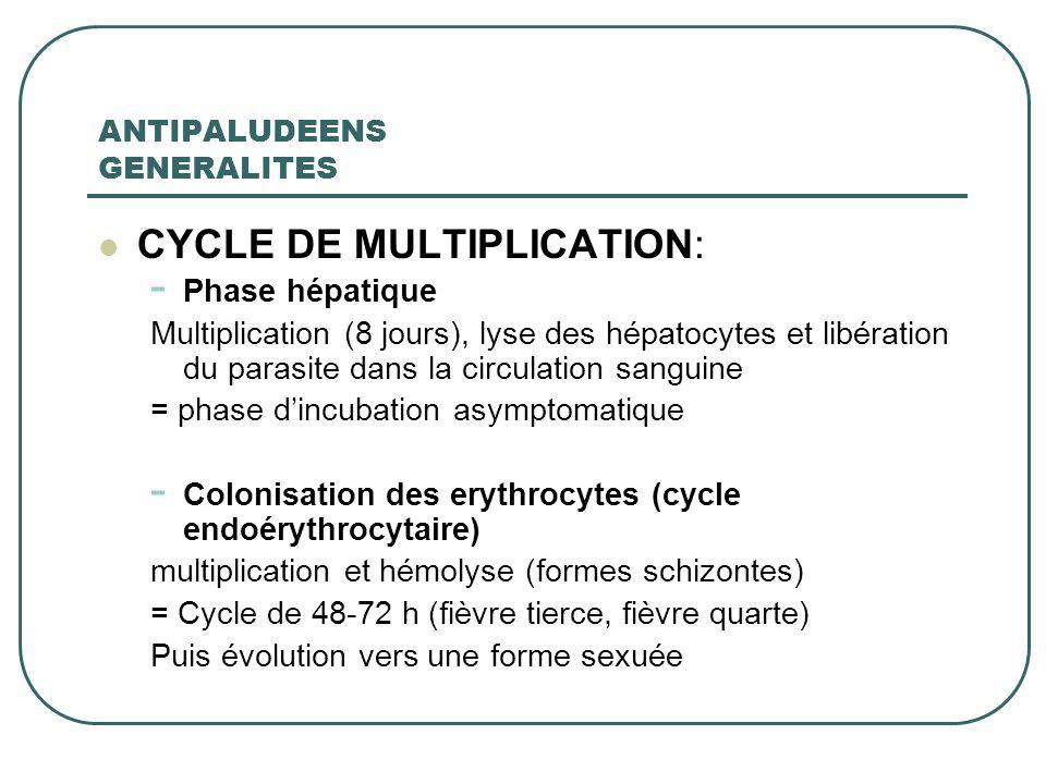 ANTIPALUDEENS GENERALITES CYCLE DE MULTIPLICATION: - Phase hépatique Multiplication (8 jours), lyse des hépatocytes et libération du parasite dans la