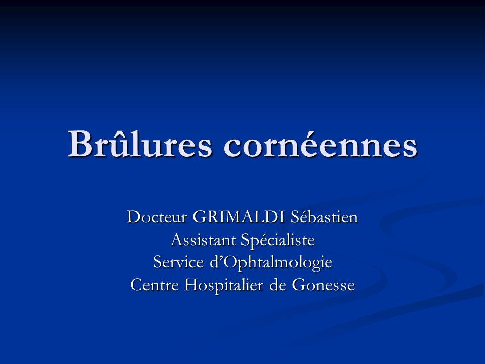 Brûlures cornéennes Docteur GRIMALDI Sébastien Assistant Spécialiste Service dOphtalmologie Centre Hospitalier de Gonesse