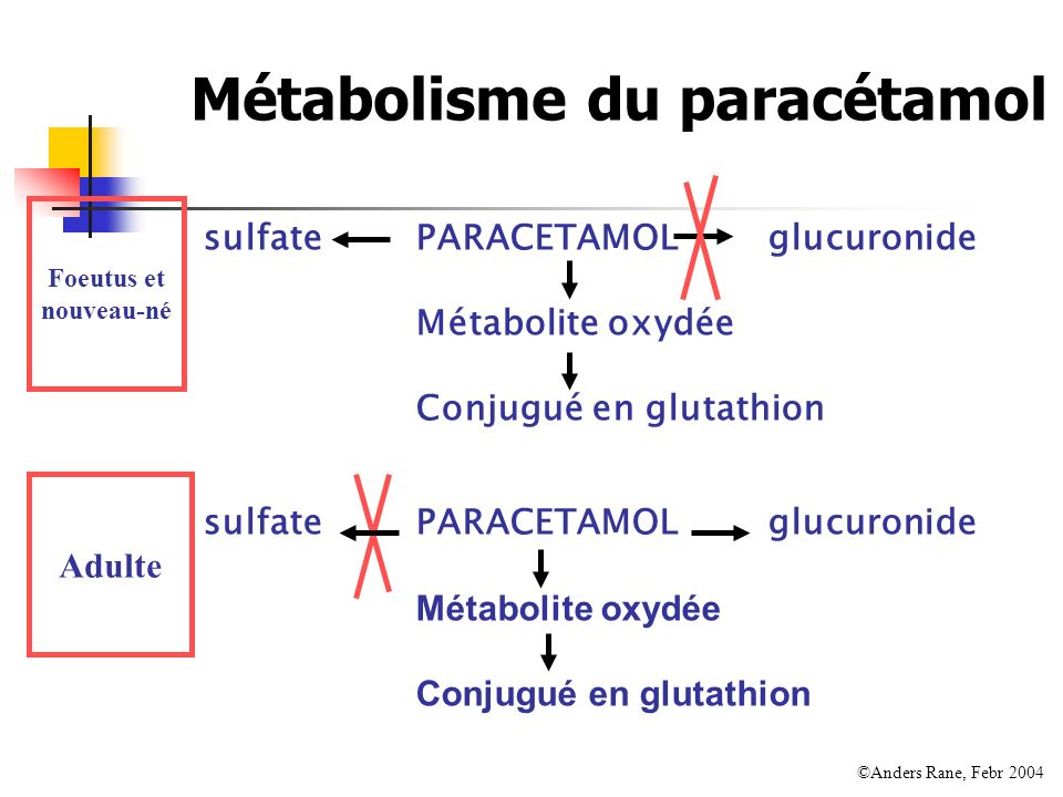 Métabolisme du paracétamol sulfatePARACETAMOL glucuronide Métabolite oxydée Conjugué en glutathion Foeutus et nouveau-né Adulte sulfatePARACETAMOL glu