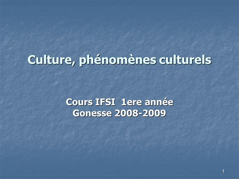 1 Culture, phénomènes culturels Cours IFSI 1ere année Gonesse 2008-2009