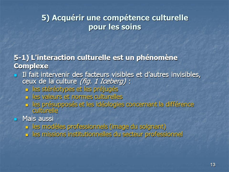 13 5) Acquérir une compétence culturelle pour les soins 5-1) L'interaction culturelle est un phénomène Complexe Il fait intervenir des facteurs visibl