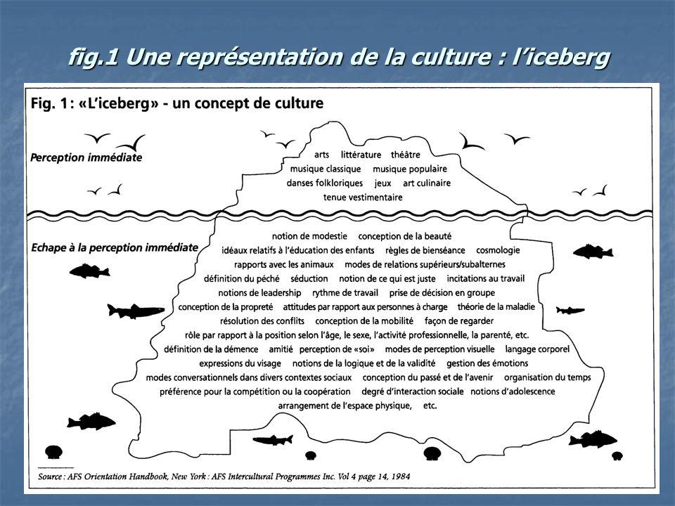 5 fig.1 Une représentation de la culture : liceberg