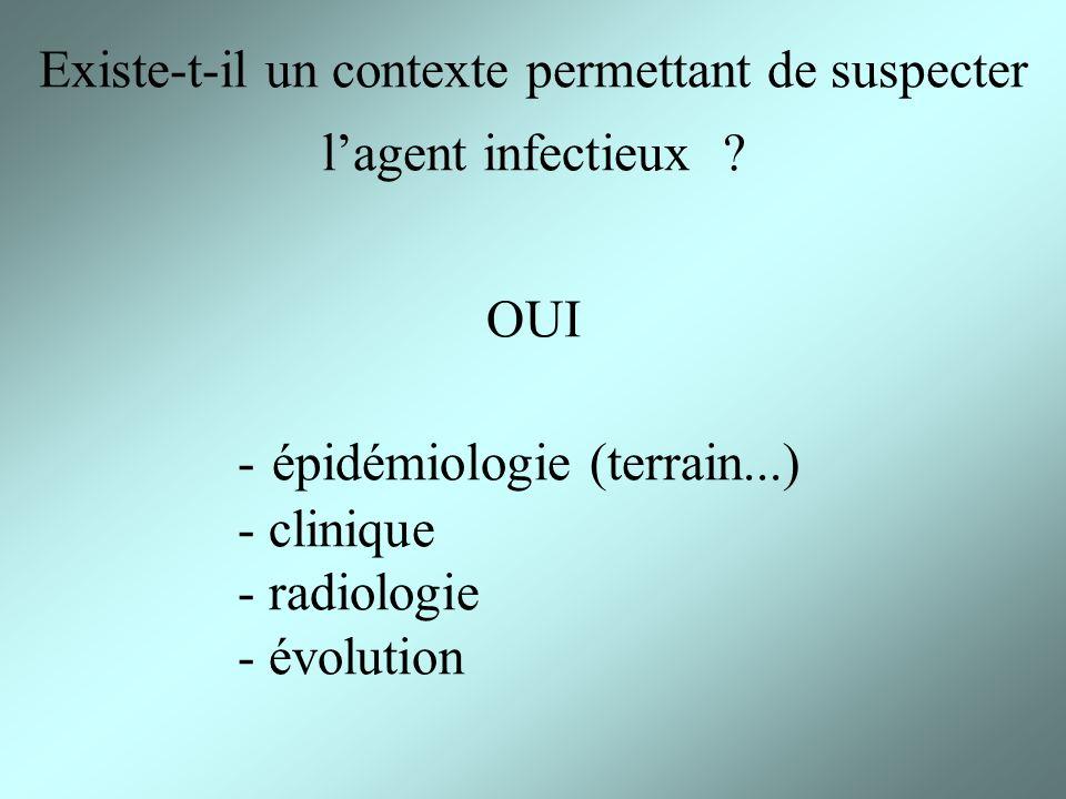 Existe-t-il un contexte permettant de suspecter lagent infectieux ? OUI - épidémiologie (terrain...) - clinique - radiologie - évolution