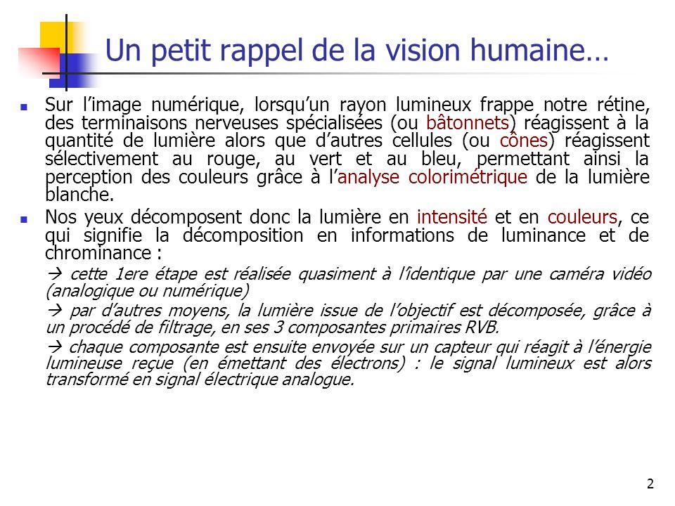 2 Un petit rappel de la vision humaine… Sur limage numérique, lorsquun rayon lumineux frappe notre rétine, des terminaisons nerveuses spécialisées (ou