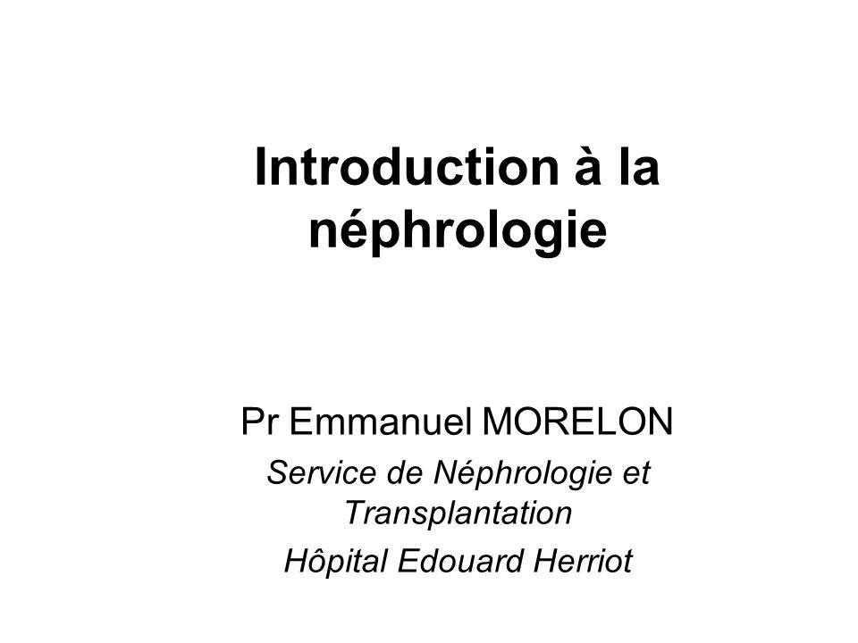 Introduction à la néphrologie Pr Emmanuel MORELON Service de Néphrologie et Transplantation Hôpital Edouard Herriot