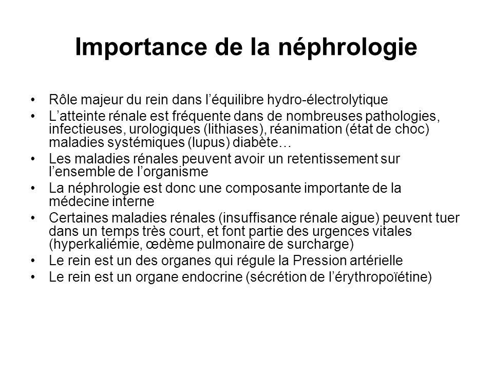 Importance de la néphrologie Rôle majeur du rein dans léquilibre hydro-électrolytique Latteinte rénale est fréquente dans de nombreuses pathologies, i