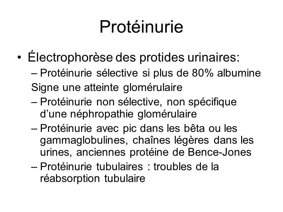Protéinurie Électrophorèse des protides urinaires: –Protéinurie sélective si plus de 80% albumine Signe une atteinte glomérulaire –Protéinurie non sél