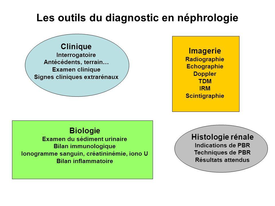 Les outils du diagnostic en néphrologie Clinique Interrogatoire Antécédents, terrain… Examen clinique Signes cliniques extrarénaux Imagerie Radiograph