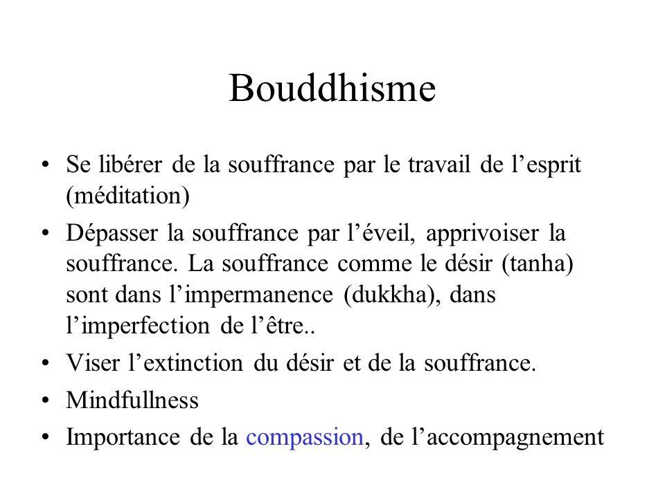 Bouddhisme Se libérer de la souffrance par le travail de lesprit (méditation) Dépasser la souffrance par léveil, apprivoiser la souffrance. La souffra